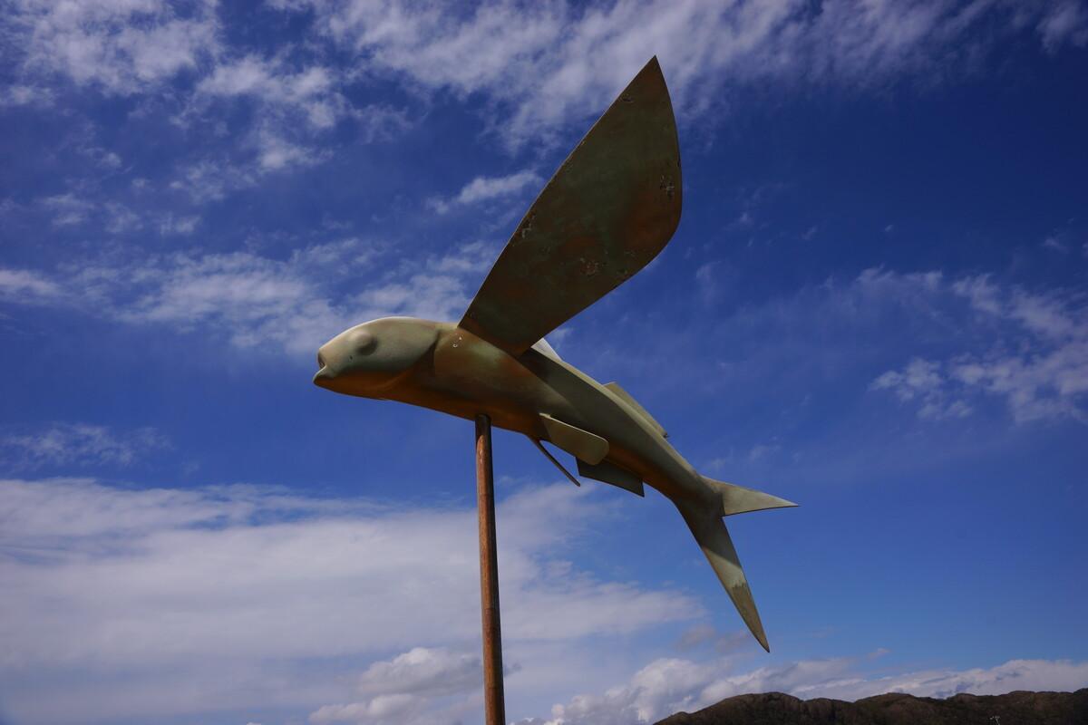 飛ぶ魚.JPGのサムネイル画像
