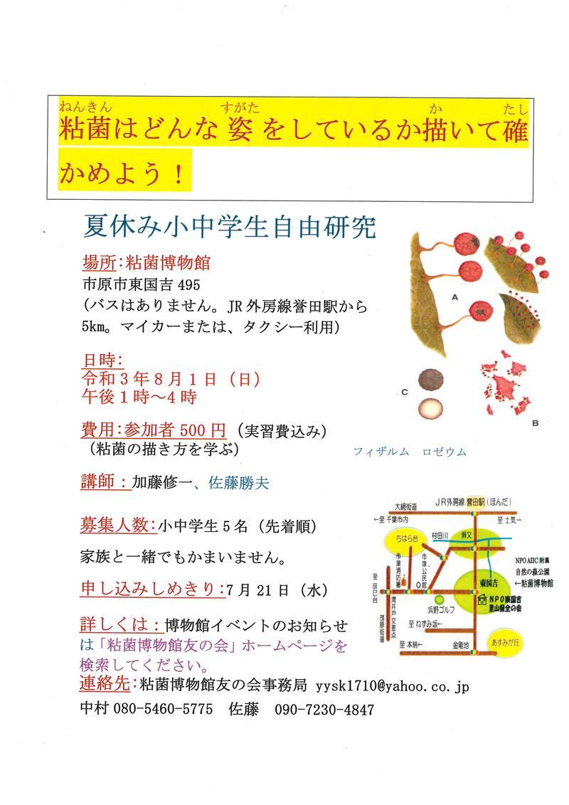 【8月1日(日)開催】粘菌はどんな姿をしているか書いて確かめよう!