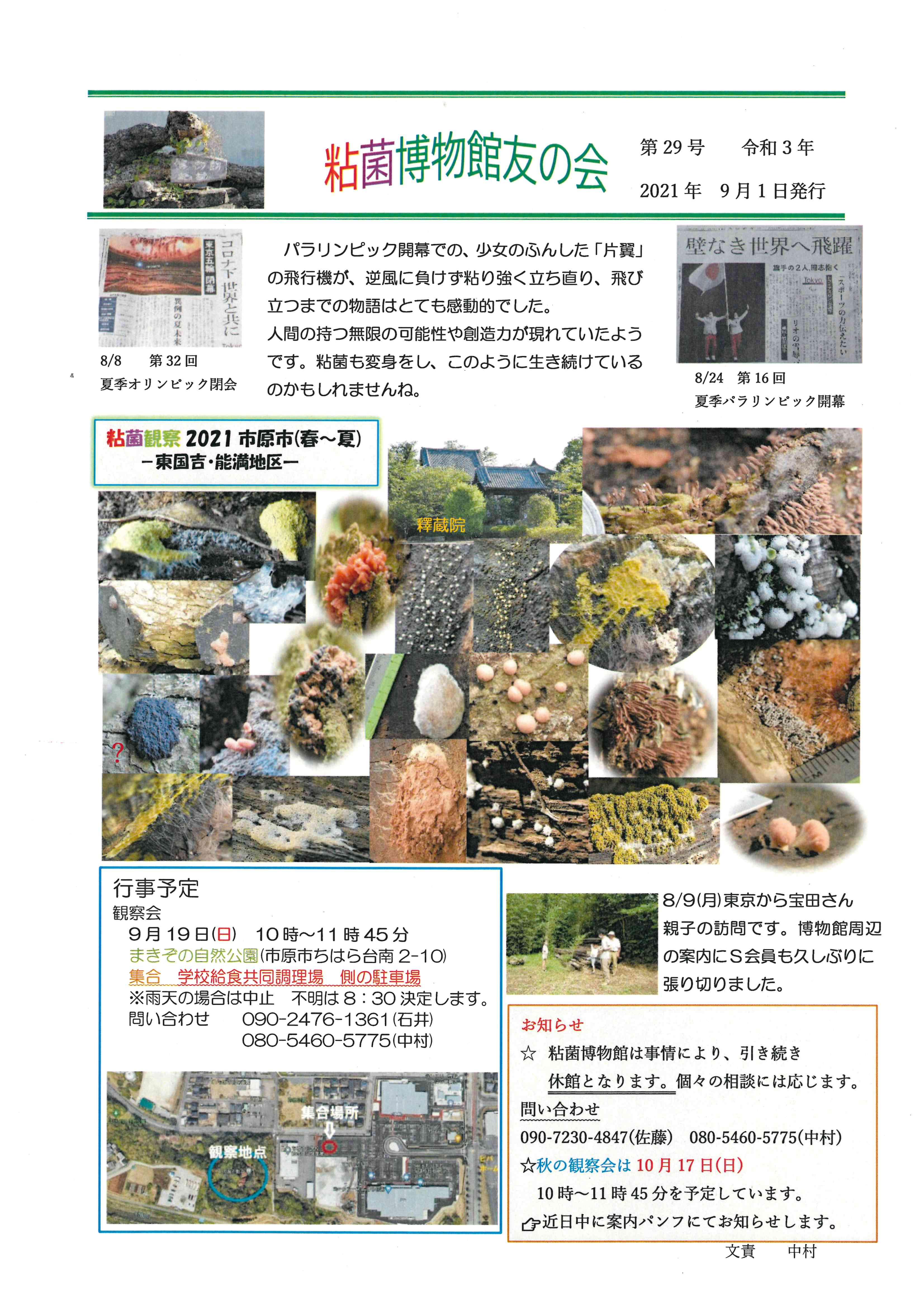 粘菌博物館友の会 会報第29号