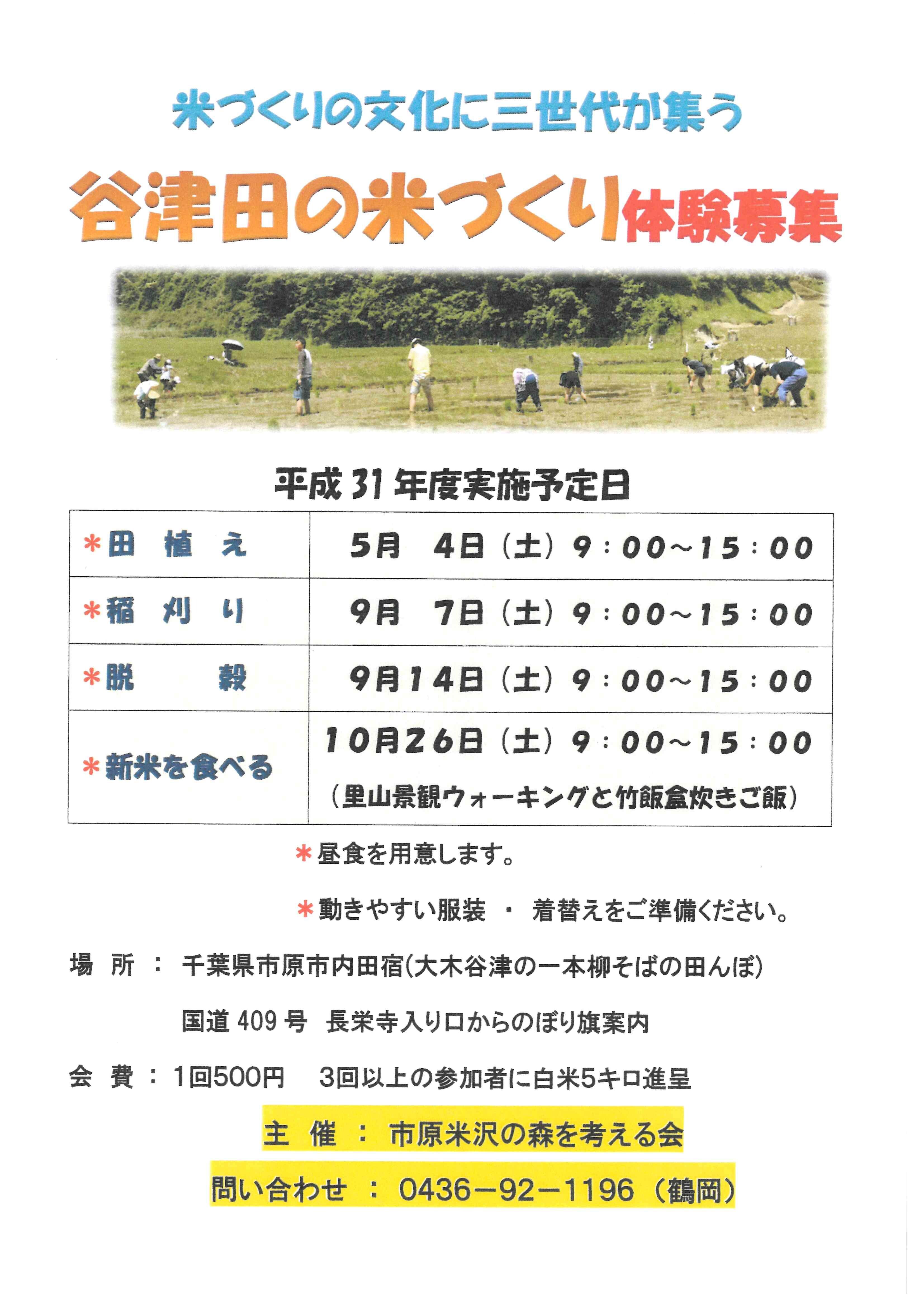 【9月7日(土)開催!】米作りの文化に三世代が集う 谷津田の米作り体験募集!