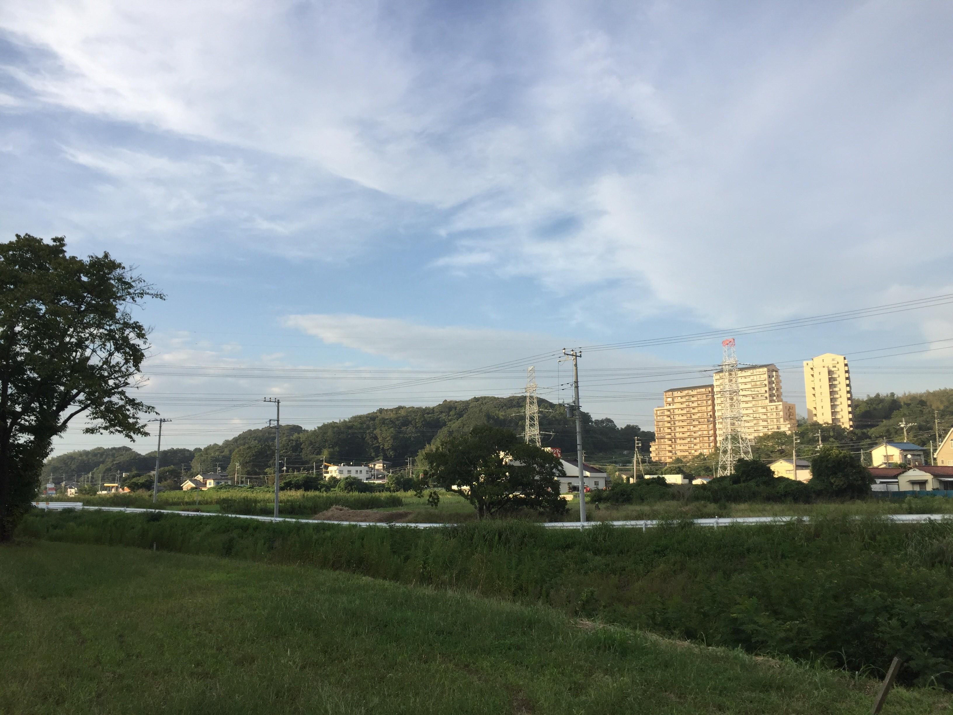 みらいseeds(椎津川水系と里山を愛する会)