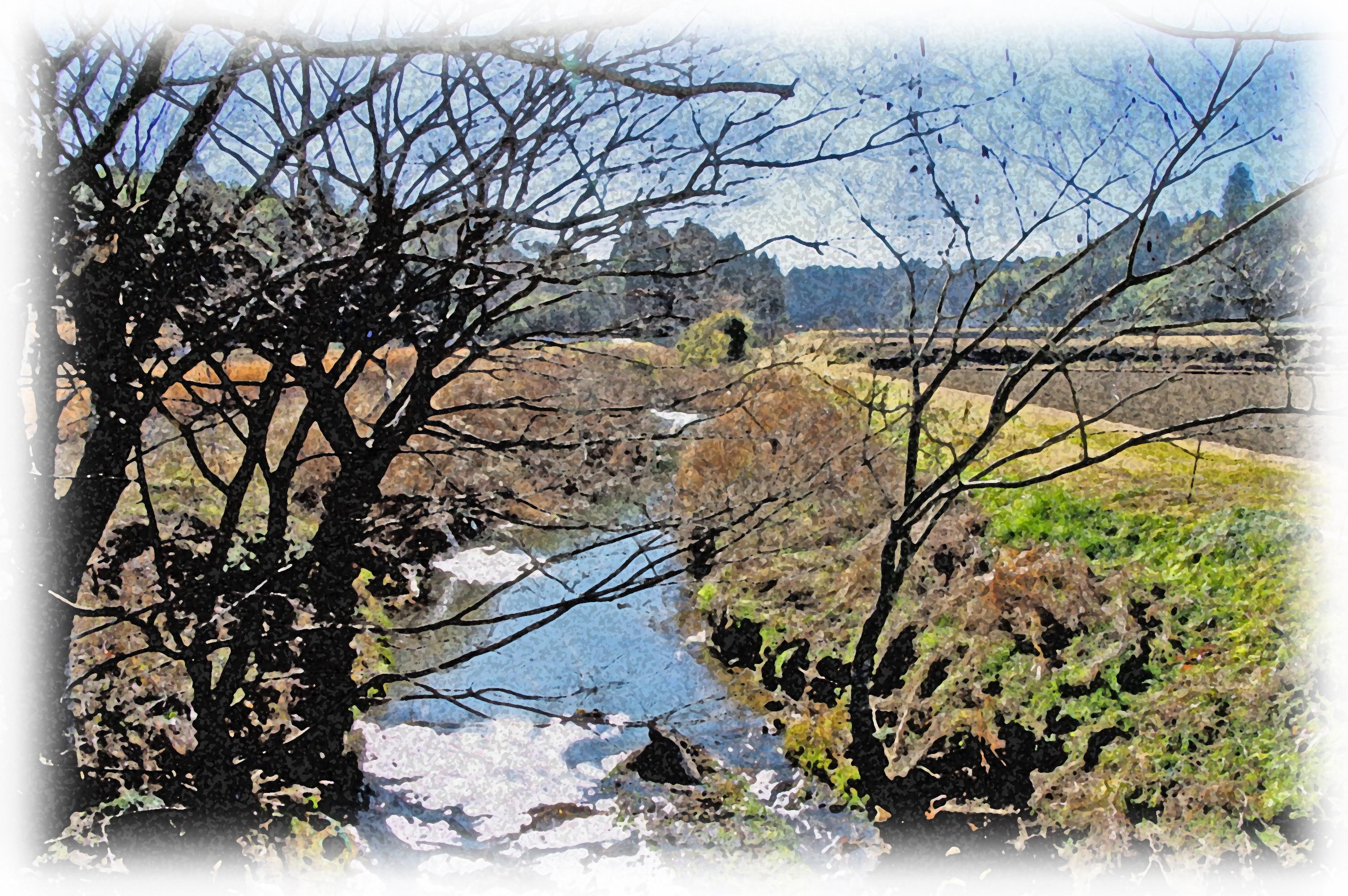 風呂の前里山クリーンイベント~清掃活動と楽しい昼食会のお誘い~